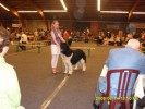 Dancer in de ring.